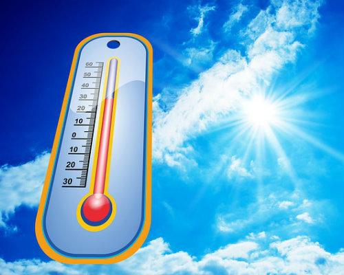 Cbi survive summer time heat